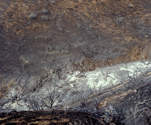 Started by a bullet fired at a nearby target range, the Boise Foothills Fire burned more than 15,000 acres in 1996.
